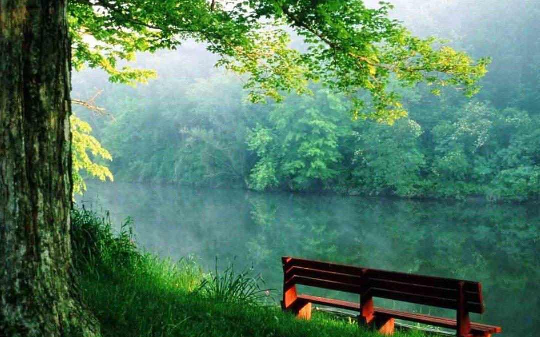 שש שיטות להערכה עצמית – נתניאל בראנדן